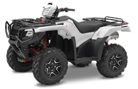 2016 Rubicon 500 Deluxe DCT IRS EPS